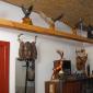 баня на дровах в с. Вильное