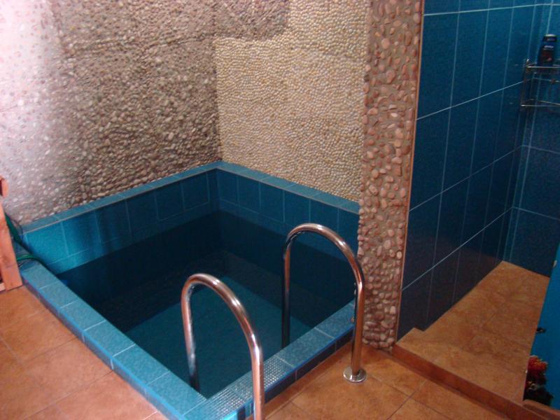 Сауна в Старой Боярке фото бассейна